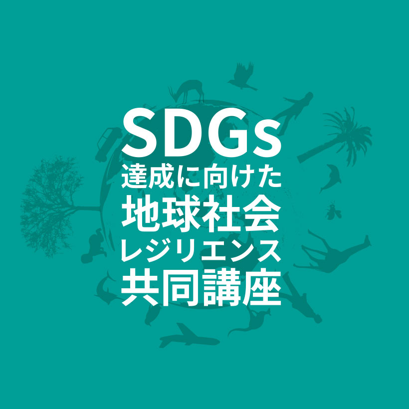 SDGs and Global Resilience Research Project